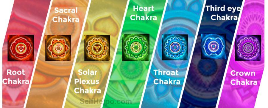 The Light Code Brain Chakras