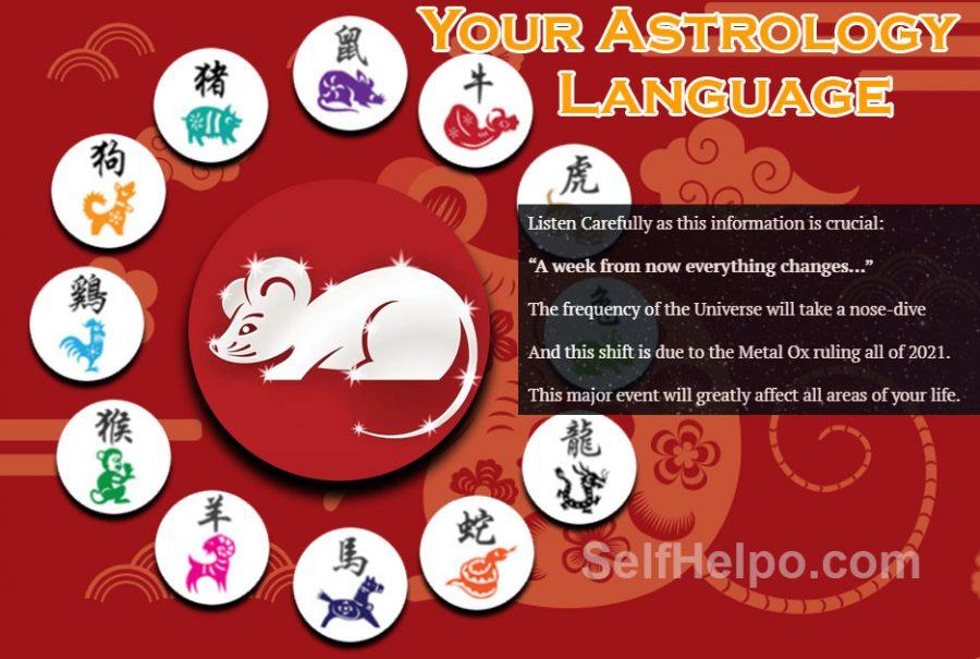 Your Astrology Language Metal Rat