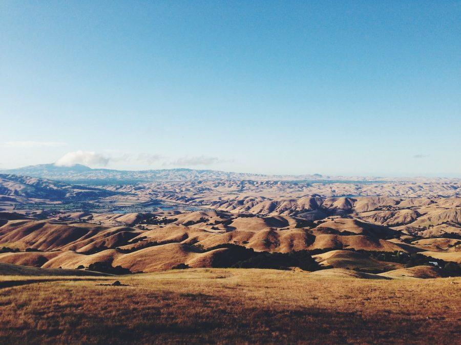 landscape drought