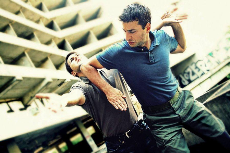 martial-arts-2481472_1920.jpg