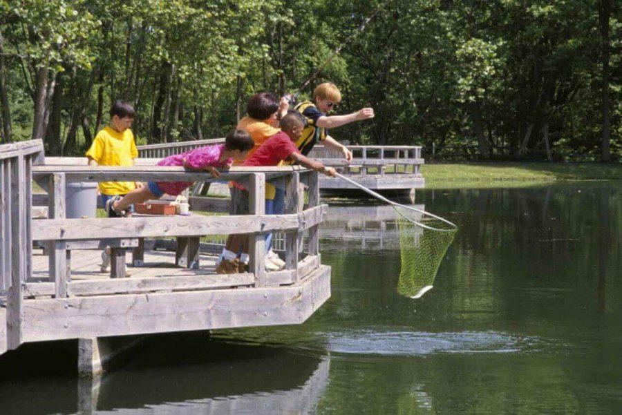 water-revolution-system-fish-pond